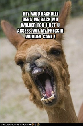 My freggin wudden cane!
