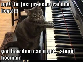 no!!!, im just pressing random keys!!!!  god how dum can u get.... stupid hooman!