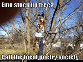 Emo stuck up tree?  Call the local poetry society
