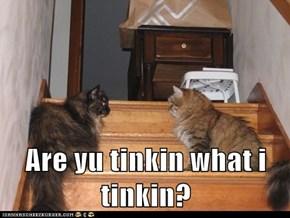 Are yu tinkin what i tinkin?