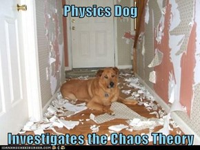 Physics Dog  Investigates the Chaos Theory