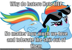 Why do haters Hate MLP  No matter how much we love and tolerate the shit out of them