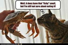 IF IT SMELLS LIKE A FISH?