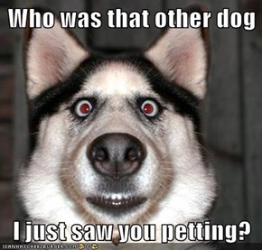 Who was that other dog  I just saw you petting?