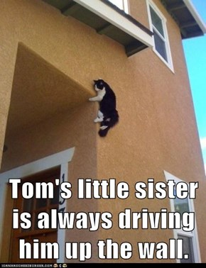 Tom's little sister is always driving him up the wall.