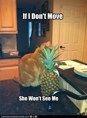 Pineapple Max