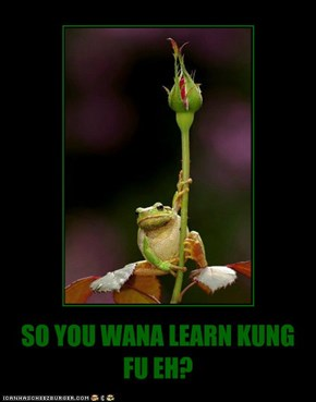 SO YOU WANA LEARN KUNG FU EH?