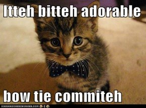 Itteh bitteh adorable  bow tie commiteh