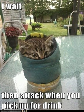 i wait   then attack when you pick up for drink
