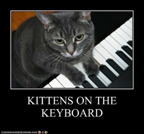 KITTENS ON THE KEYBOARD
