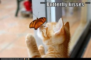*** Butterfly kisses ***