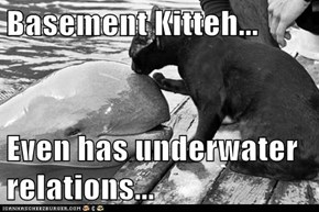 Basement Kitteh...  Even has underwater relations...