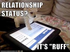 "RELATIONSHIP STATUS?  IT'S ""RUFF"""
