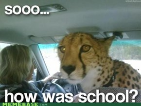 Did You Cheetah on Your Test Like I Told You?