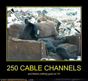 250 CABLE CHANNELS