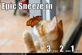 Epic Sneeze in  3 ... 2 ...1 ...