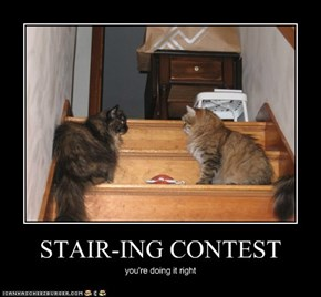 STAIR-ING CONTEST