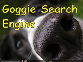 Goggie Search Engine.