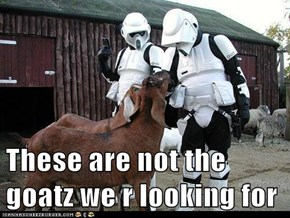 These are not the goatz we r looking for