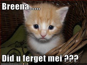 Breena......  Did u ferget mei ???