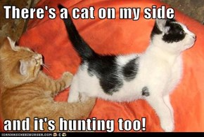 There's a cat on my side  and it's hunting too!