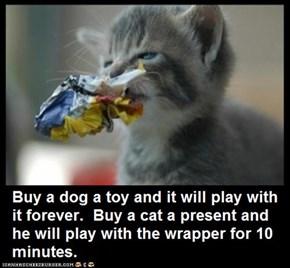Cat Truisms - present