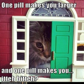 One pill makes you larger  and one pill makes you... itteh bitteh?