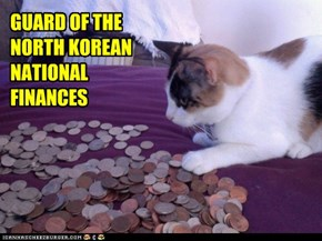 GUARD OF THE NORTH KOREAN NATIONAL FINANCES