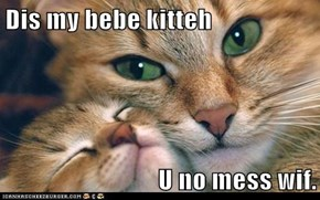 Dis my bebe kitteh  U no mess wif.