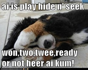 ai is play hide n' seek  won,two,twee,ready or not heer ai kum!