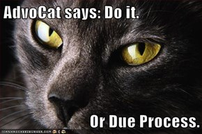 AdvoCat says: Do it.   Or Due Process.