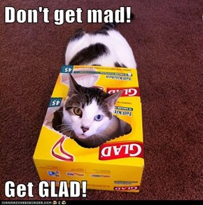 Don't get mad!  Get GLAD!