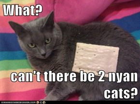What?  can't there be 2 nyan cats?