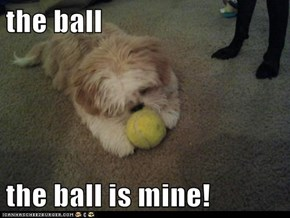 the ball   the ball is mine!