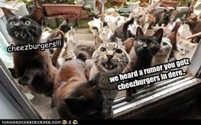 we heard a rumor you gotz cheezburgers in dere..