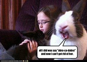 """all i did was say """"abra-ca-dabra""""  and now i can't get rid of her."""