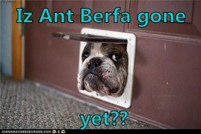 Iz Ant Berfa gone   yet??