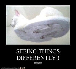 SEEING THINGS DIFFERENTLY !
