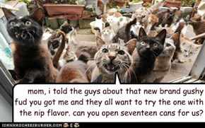mom, i told the guys about that new brand gushy  fud you got me and they all want to try the one with the nip flavor. can you open seventeen cans for us?