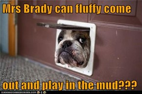 Mrs Brady can fluffy come  out and play in the mud???