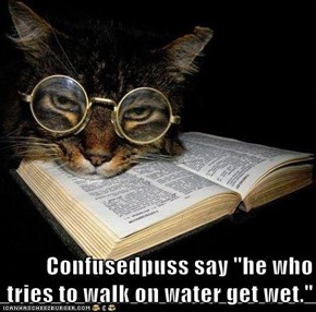 "Confusedpuss say ""he who tries to walk on water get wet."""