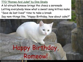 """Happy Birthday, Romeow!"" (TTO ""Romeo And Juliet"" by Dire Straits)"