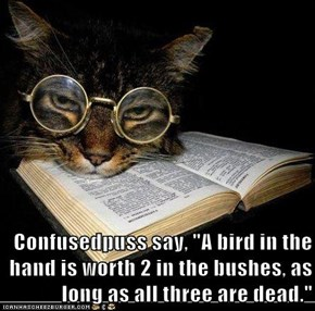 "Confusedpuss say, ""A bird in the hand is worth 2 in the bushes, as long as all three are dead."""
