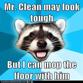 Mr. Clean may look tough  But I can mop the floor with him