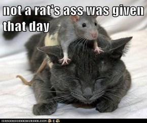 not a rat's ass was given that day