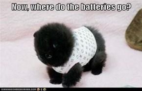 Now, where do the batteries go?