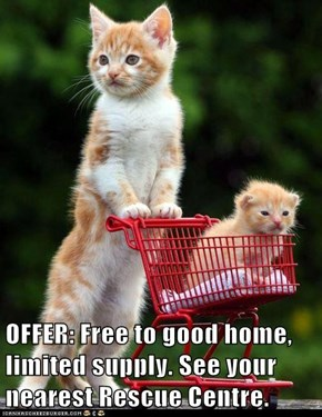 OFFER: Free to good home, limited supply. See your nearest Rescue Centre.