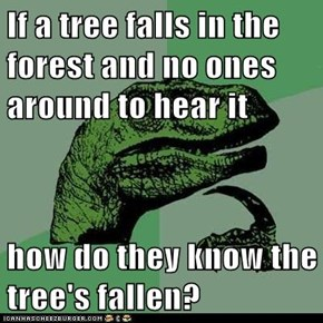 If a tree falls in the forest and no ones around to hear it  how do they know the tree's fallen?