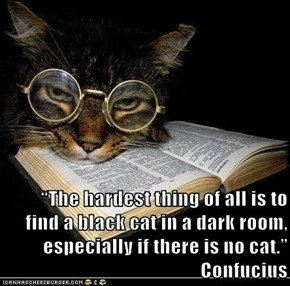 """The hardest thing of all is to find a black cat in a dark room, especially if there is no cat.""  Confucius"