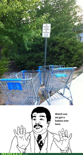 Those are Some Rebellious Carts.